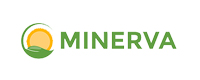 Minerva Technology Solutions