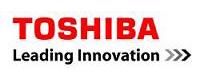 TSDV - Toshiba Software Development