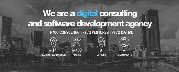 PYCO Group-big-image